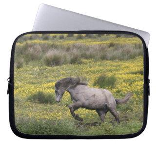 Ett hästspring i ett fält av gula vildblommar laptop fodral