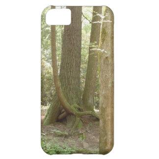 Ett konstigt placerar (träd) iPhone 5C fodral