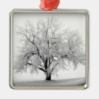 Ett lone Frostry träd i den North Dakota prärien Julgransprydnad Metall