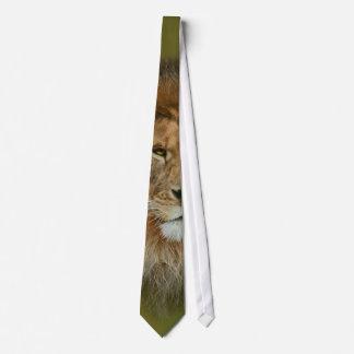Ett majestätiskt lejont slips
