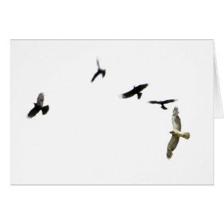 Ett mord av kråkor hälsningskort