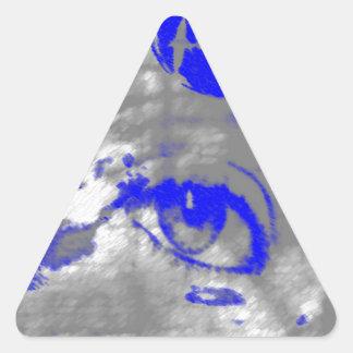 ett öga för dolphins.jpg triangelformat klistermärke
