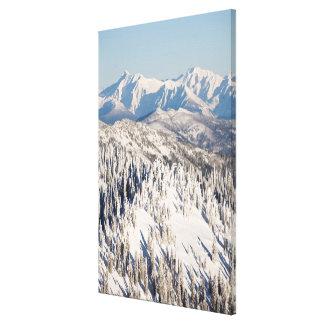 Ett sceniskt beskådar av snöig berg och Trees. Canvastryck