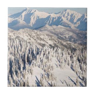 Ett sceniskt beskådar av snöig berg och Trees. Kakelplatta