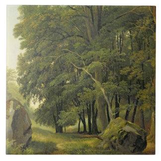 Ett skogsbevuxet landskap (olja på papper på panel kakelplatta