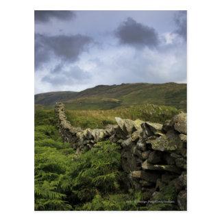 Ett stenstaket till och med fält vykort