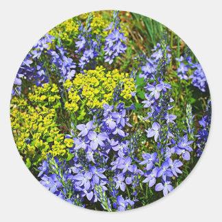 Euphorbia och Veronica Runt Klistermärke