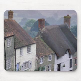 Europa England, Dorset, guld- backe, Shaftesbury.  Musmatta