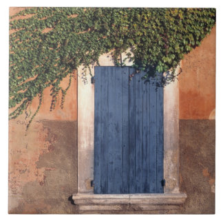 Europa frankrike, Roussillon. Murgrönaen täcker vä Kakelplatta
