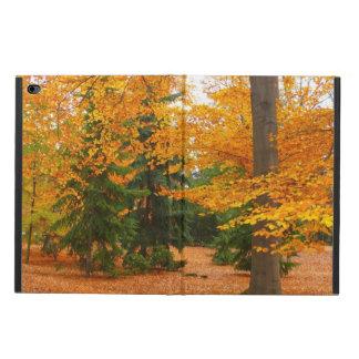 Evergreengräs och höstträd powis iPad air 2 skal