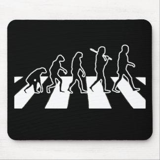 EvolutionAbbeyväg Musmatta