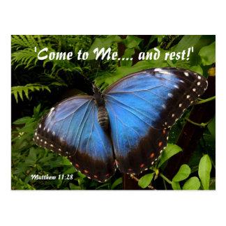 Exotisk fjäril för blått vykort