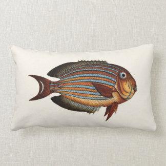 Exotisk tropisk fisk i orange och blått dekorativ kudde