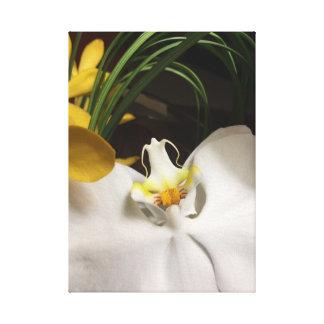 Exotiska orchid- och välva sigormbunksblad canvastryck