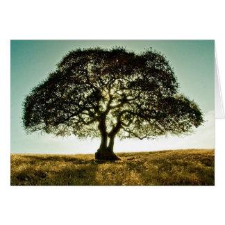 Få det väl kortet med träd hälsningskort