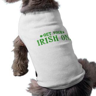 Få på din irländare hundtröja