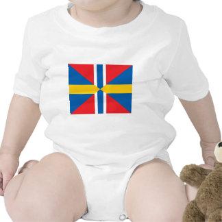 Facklig flagga för norgesverige sparkdräkt