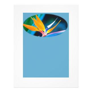 Fågel av paradisbrevpapper reklamblad