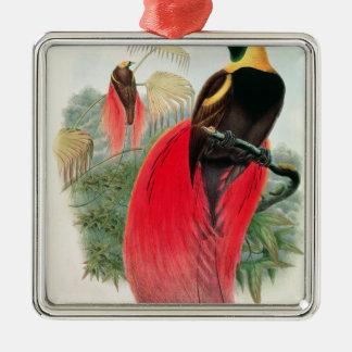 Fågel av paradiset som inristas av T. Walter Julgransprydnad Metall