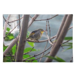 Fågel i en trädbordstablett bordstablett