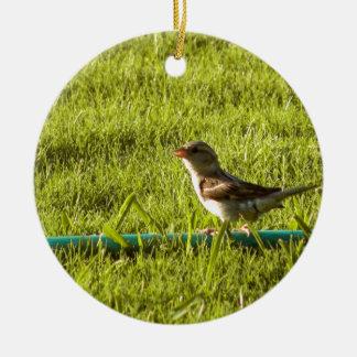 Fågel Julgransprydnad Keramik