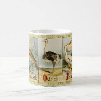 Fågelalfabet N-P: Näktergal Ostrich, pelikan Kaffemugg