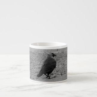 Fågelbild. Jackdaw. Espressomugg