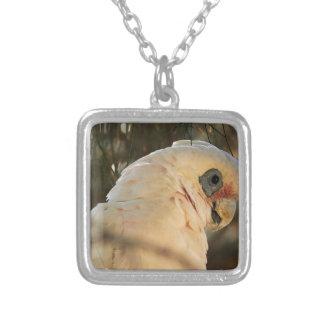 Fågelögon Silverpläterat Halsband