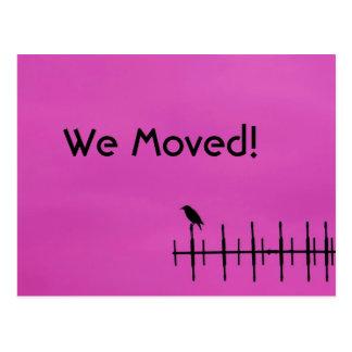FågelSilhouette - vi flyttat vykortet Vykort