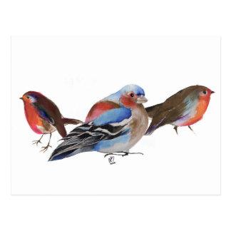 Fåglar av en fjäder 2011 vykort