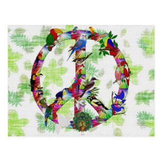 Fåglar av fred vykort