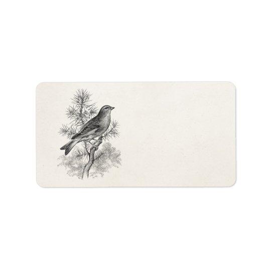 Fåglar för Finch för fågel för sång för Linnet för Adressetikett