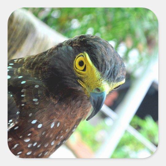 Fåglar Fyrkantigt Klistermärke