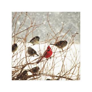 Fåglar i Bush Canvastryck