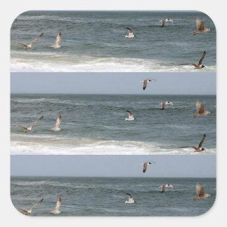 Fåglar i flyg av Shirley Taylor Fyrkantigt Klistermärke