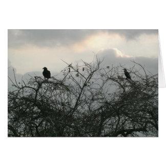 Fåglar i stormen hälsningskort