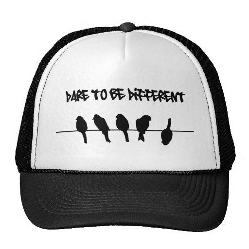 Fåglar på en binda - våga för att vara olikt baseball hat