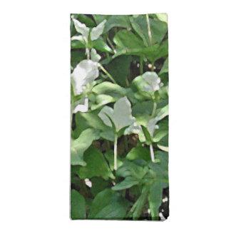 Fält av den Trilliumservetten/servetten Tygservett