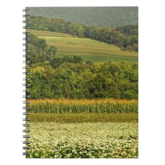 Fält av korn anteckningsbok med spiral