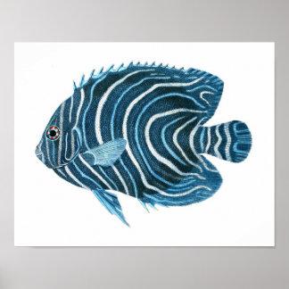 Fanciful tropiskt tryck för konst för fisk för kor poster