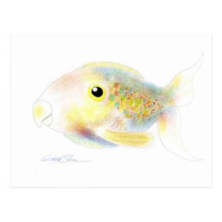 Fantasifisk: Polly vykort