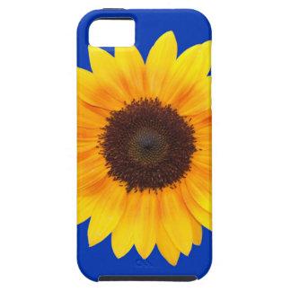 Fantastisk höstskönhetsolros iPhone 5 cases