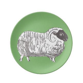 Får med grönt dekorativt porslin pläterar