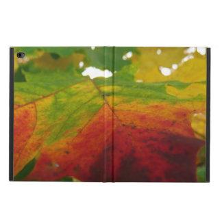 Färger av fotografin för lönnlövhöstnatur powis iPad air 2 skal
