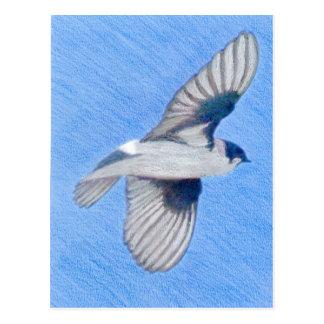 Färgpennateckning av en violett grön svala vykort