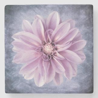 Färgrik blommigt för purpurfärgad stenunderlägg