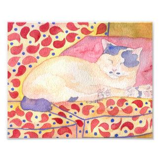 Färgrik katt på soffakonsttryck fototryck