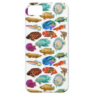 Färgrik tropisk akvariefiskiphone case iPhone 5 cases