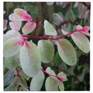färgrik växt för snowbush tygservett