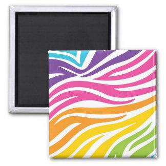 Färgrika gåvor för regnbågezebra tryckmönster magnet